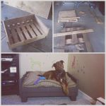 Camas Para Perros Con Palets Lujohome Made Pallet Home Furnishings Ideas As Well As How To