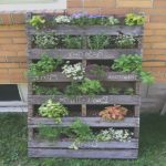 Jardin Vertical Pallet Nuevoidea By Kim Torres On Backyard Style