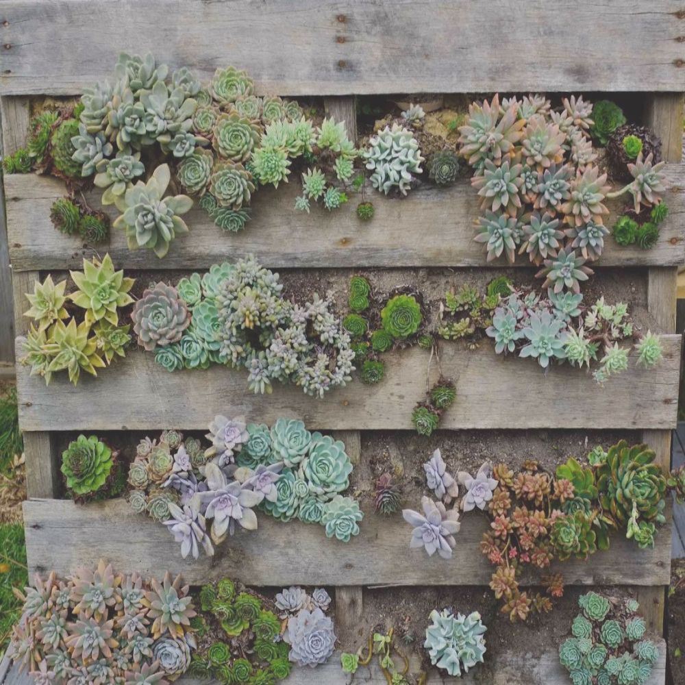ways to build a pallet planter