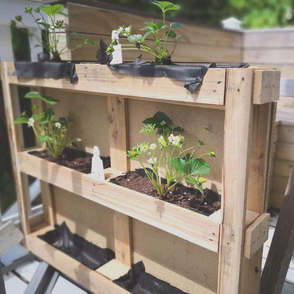 diy wood pallet planter a pact and cost effective project