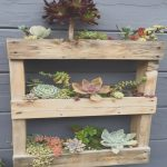 Palets Plantas Lujowood Pallet Re Cycled W Succulent
