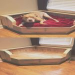 Cama Madera Perro Nuevolovely Pallets Dog Bed