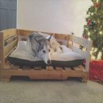 Cama Perro Palets Comprar Agradableamazing Uses For Old Pallets – 35 Pics