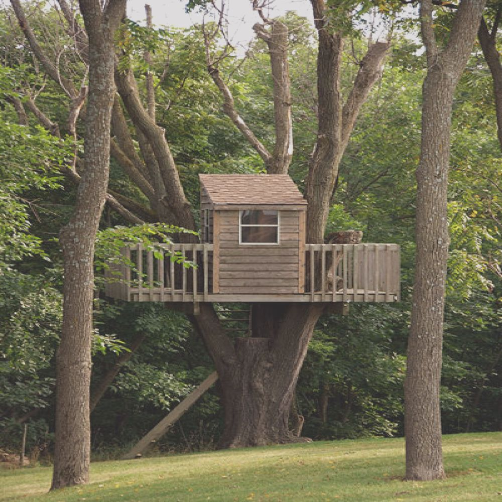 how to build treehouse by wikihow