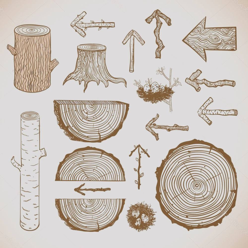 stock illustration sketches of wood cuts logs