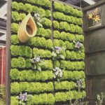 Palet Jardin Elegante13 Pallet Vertical Garden For Beautifying You Home