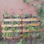 Palet Jardin Frescomake Your Own Pallet Garden A Step By Step Guide