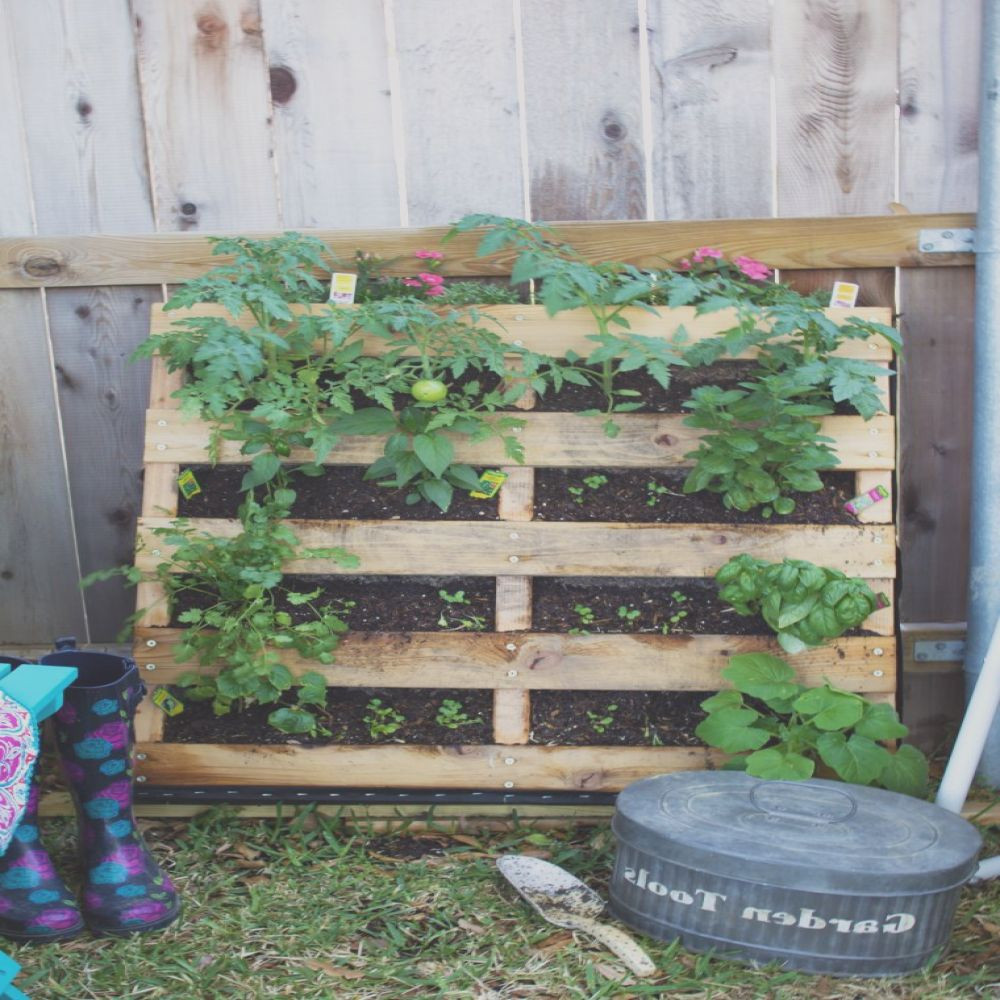 how to build pallet garden