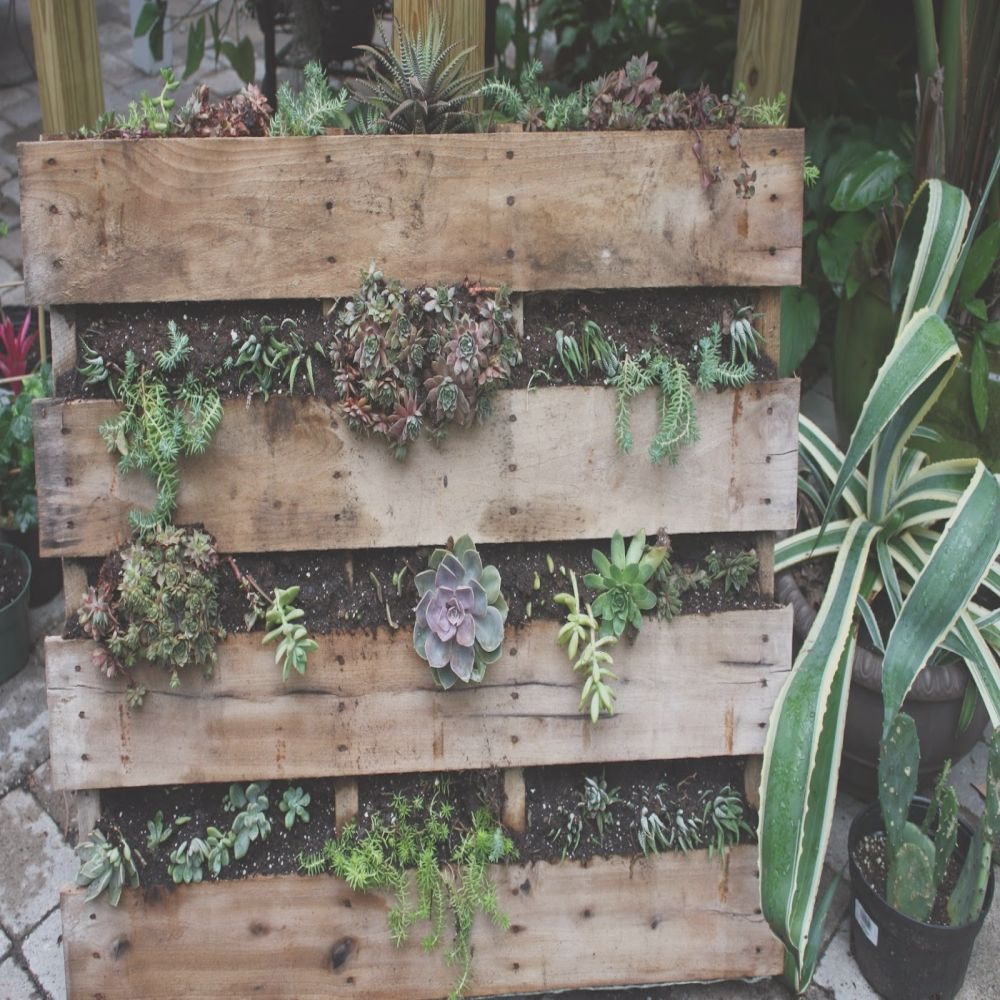 recycled pallet projects for garden